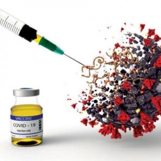 تعرف على الكيفية التي تعمل بها اللقاحات